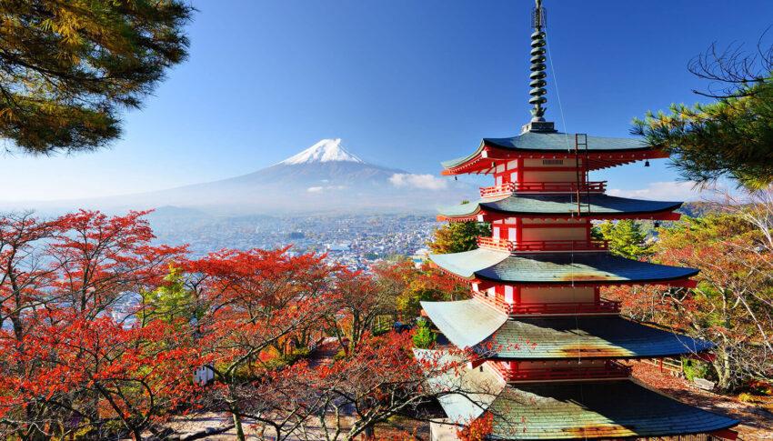 Japan – 5 Days in Tokyo